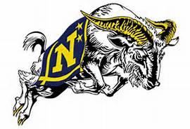 navy bull